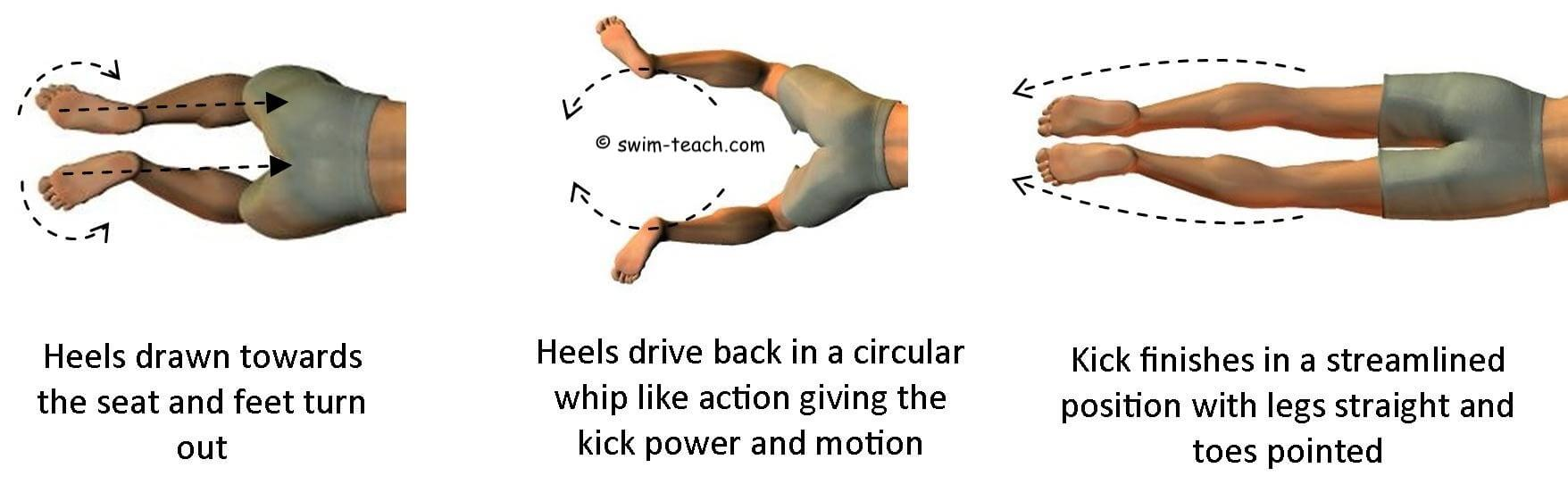 Overhead view of breaststroke leg kick technique.