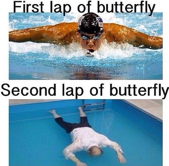 butterfly swimming quotes