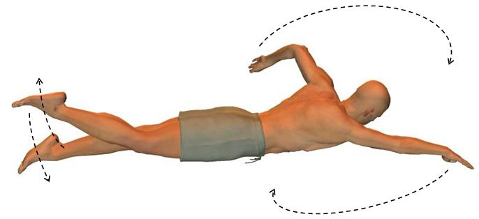front crawl technique