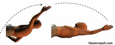 swim-backstroke-arm-technique.jpg