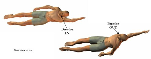 Backstroke breathing technique