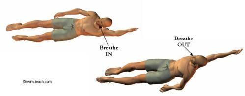 Backstroke breathing technique