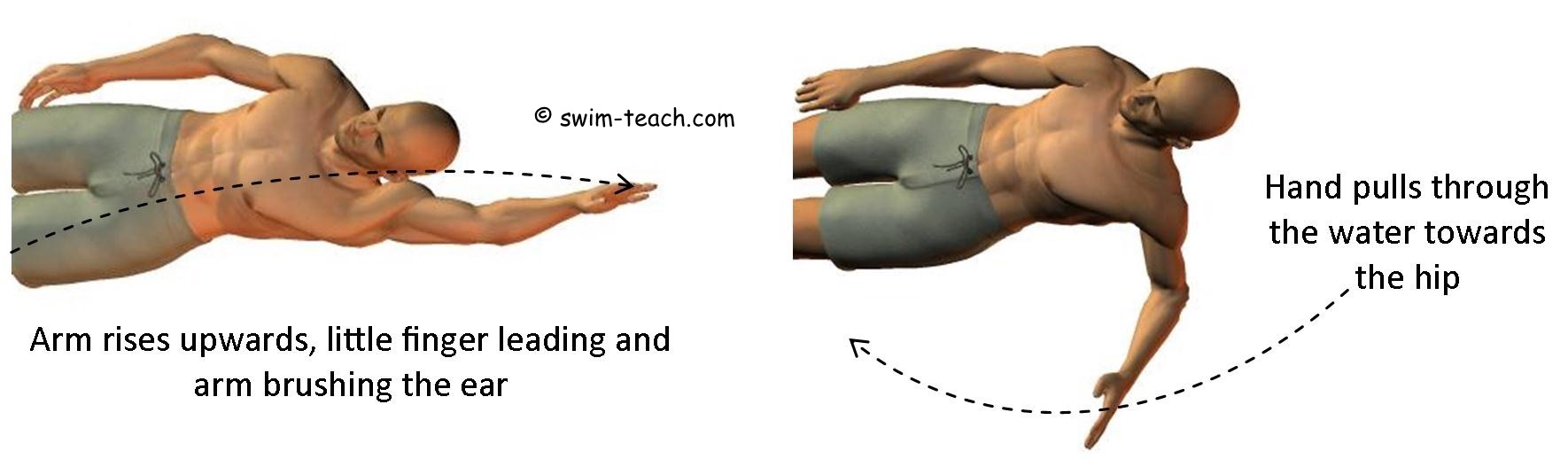 Basic backstroke arm technique for beginners