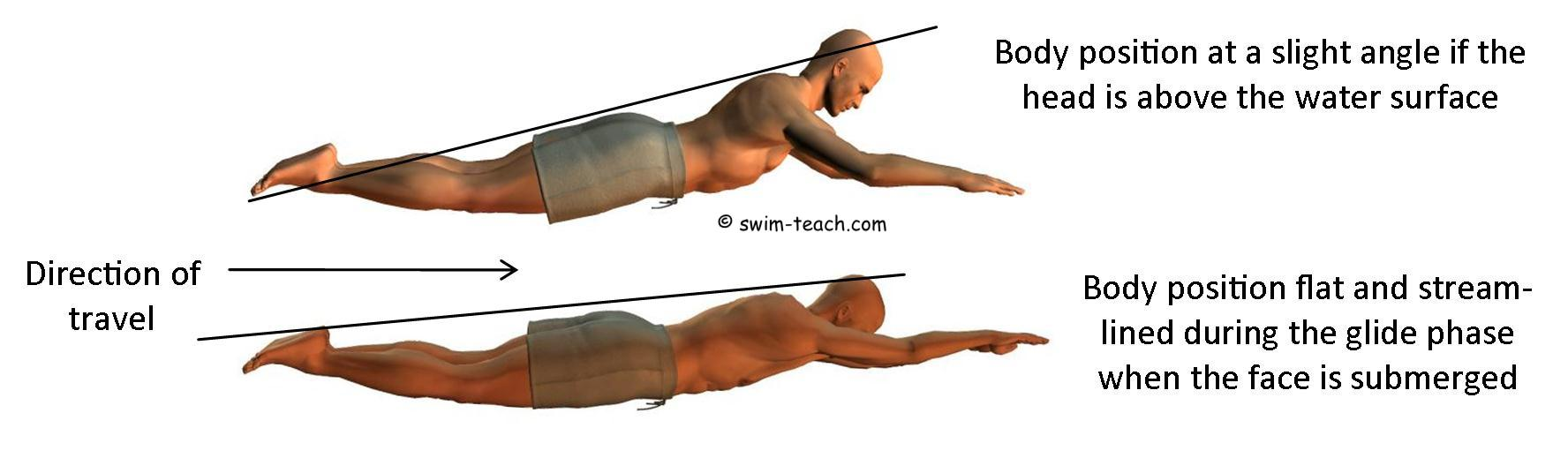 swimming position for breaststroke