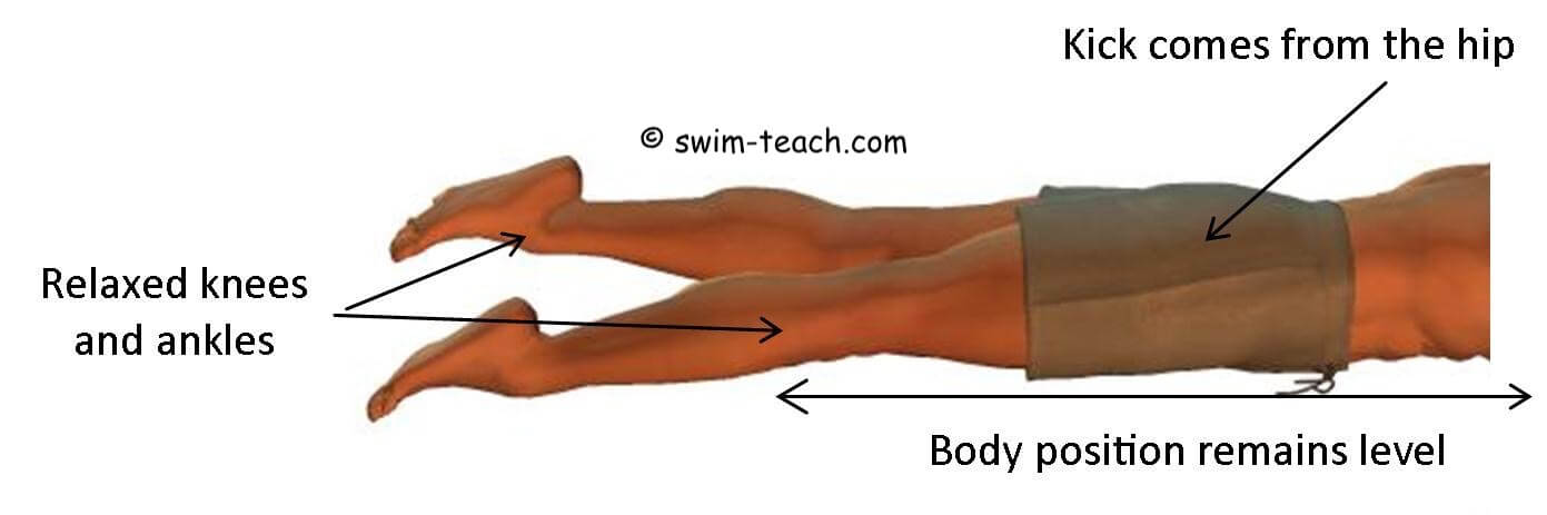 Front crawl kicking from the hip with relaxed knees and ankles
