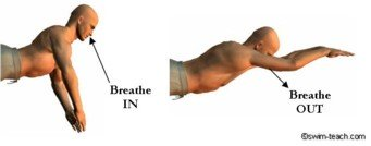 Breaststroke breathing technique